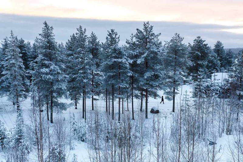 Chùm ảnh: Người dân Bắc Âu chào đón Giáng sinh 2016 - ảnh 13