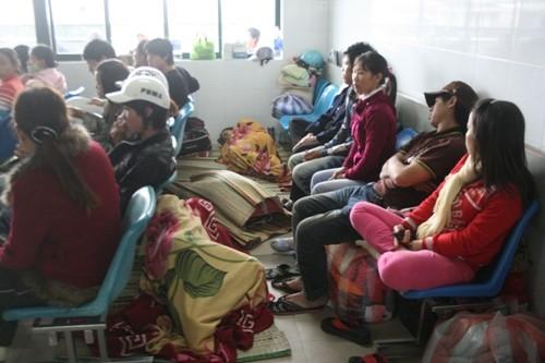 Đà Nẵng: Báo động dịch sốt xuất huyết và tay-chân-miệng - ảnh 1