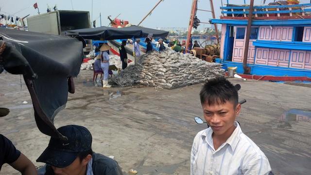 Đà Nẵng: Ngư dân, tiểu thương lao đao vì thông tin cá nhiễm độc - ảnh 2