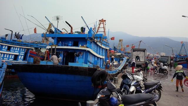 Đà Nẵng: 'Nước biển bình thường cứ vô tư tắm'! - ảnh 1