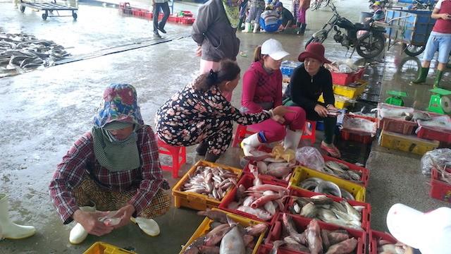 Đà Nẵng: Thành lập ban chỉ huy tiền phương tại cảng cá - ảnh 2