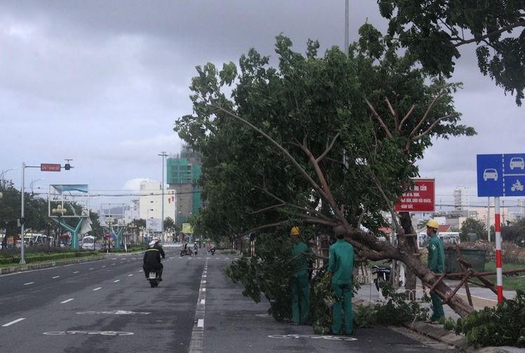 Đà Nẵng: Yêu cầu dọn sạch TP trong vòng một ngày sau bão - ảnh 1