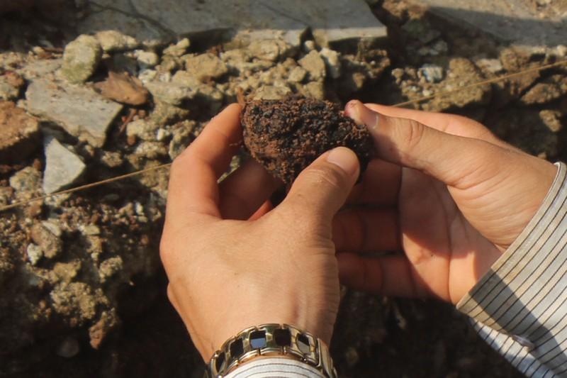 Thấy gì khi khai quật khu vực mộ vua Quang Trung  - ảnh 8