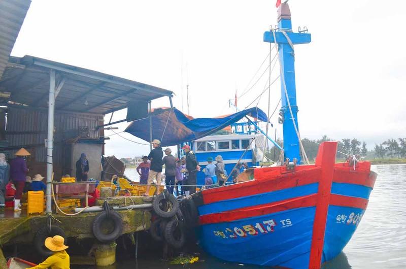 Ngư dân Quảng Ngãi trúng đậm cá biển đầu năm - ảnh 1