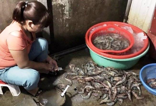 Phát hiện tôm sú bơm tạp chất tại chợ hải sản Đà Nẵng - ảnh 1