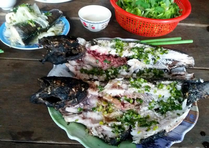 Về An Giang, uống càphê 4.000, ăn cá lóc 20.000 đồng/kg - ảnh 3