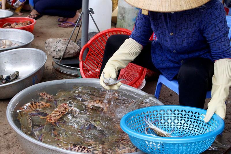 'Chảy nước miếng' với chợ hải sản ở Hồ Tràm - ảnh 13