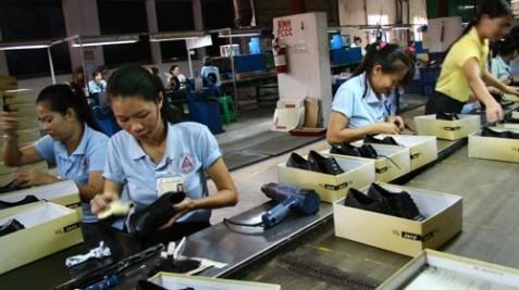 Bộ Tài chính công bố các mặt hàng được giảm thuế sau TPP - ảnh 2
