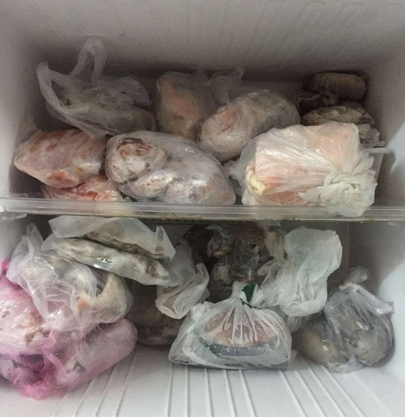 Đựng đồ ăn trong ngăn đá bằng túi nylon liệu có hại? - ảnh 2