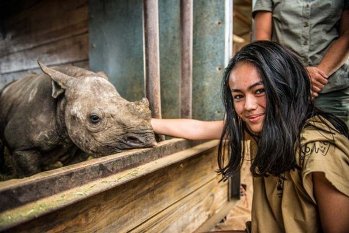 Chung tay bảo vệ  động vật hoang dã - ảnh 1