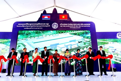 Vinamilk: Nhãn hiệu dẫn đầu Việt Nam - ảnh 2