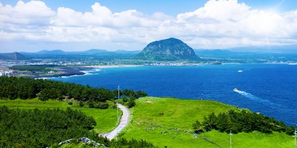 46 du khách Việt Nam mất tích trên đảo Jeju của Hàn Quốc - ảnh 1