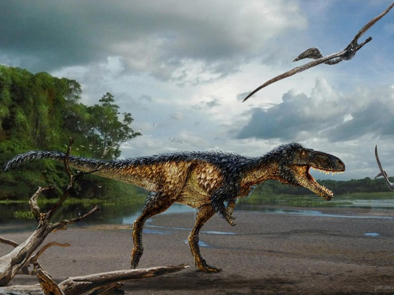 Giải mã bí ẩn sự tiến hóa của khủng long bạo chúa - ảnh 1