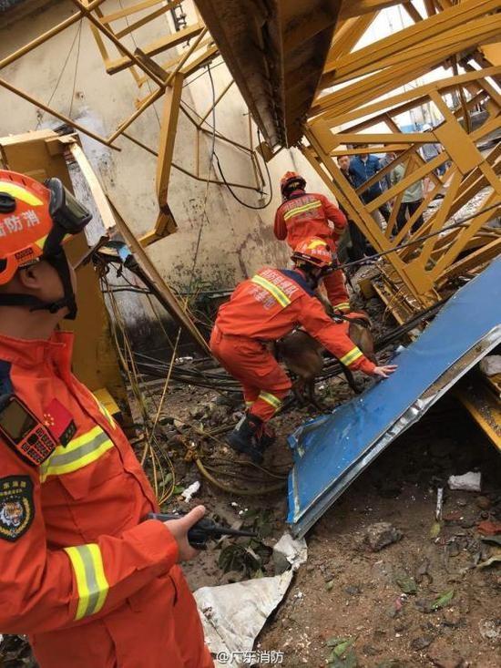 Trung Quốc: Cần cẩu đè sập khu nhà tạm, 12 người chết - ảnh 5