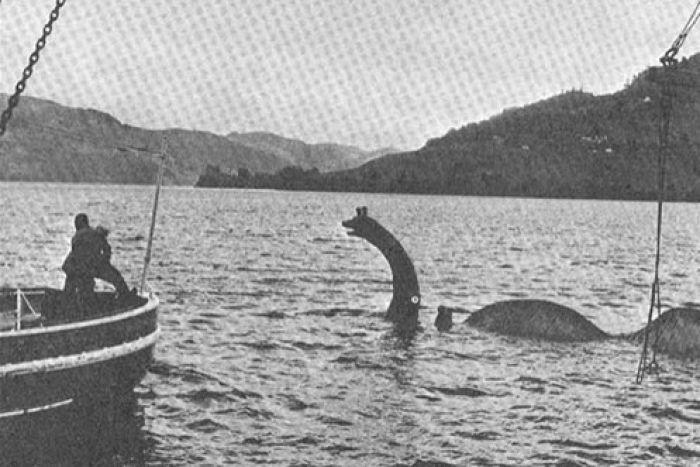 Kết quả bất ngờ sau cuộc săn lùng quái vật Loch Ness - ảnh 2