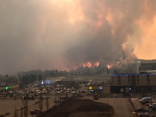 Cháy rừng dữ dội, sơ tán cả thành phố - ảnh 2