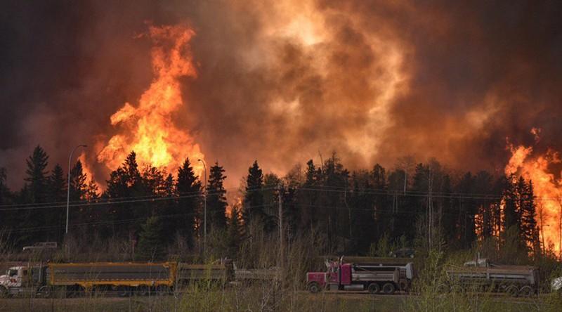 Cháy rừng dữ dội, sơ tán cả thành phố - ảnh 1