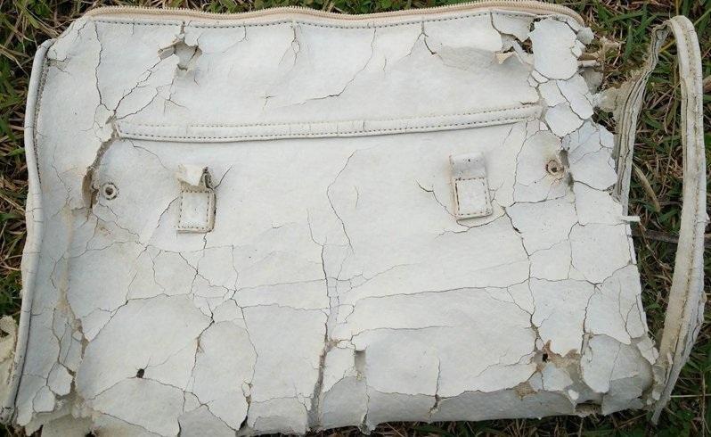Tìm thấy vật dụng cá nhân nghi của hành khách MH370  - ảnh 5