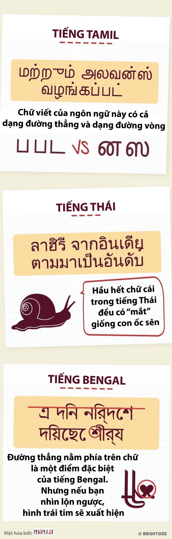Nhận biết sự khác biệt thú vị ở các thứ tiếng châu Á - ảnh 3