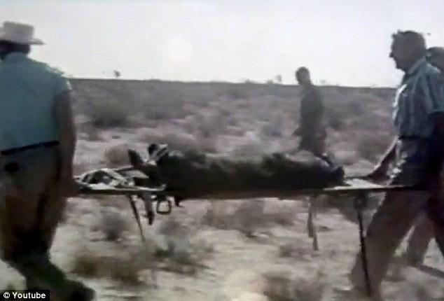 Không quân Mỹ dùng gấu thử nghiệm ghế thoát hiểm - ảnh 4
