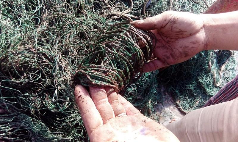 'Bùn lạ' tấn công lưới ngư dân miền Trung - ảnh 3