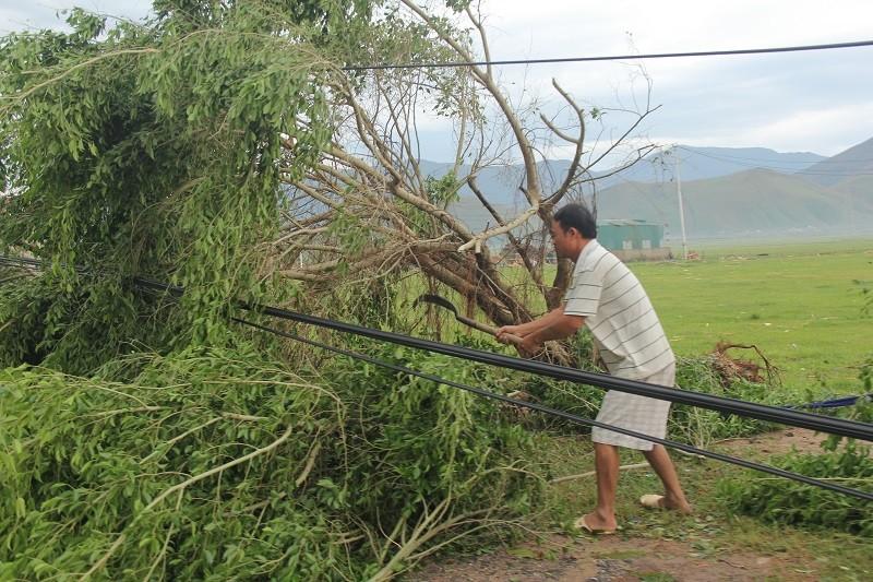 Quảng Bình dọn các đống ngổn ngang của bão số 10 - ảnh 6