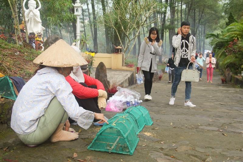 Thảnh thơi đi xin 'nước cam lồ' ở tượng đài Quan âm - ảnh 2