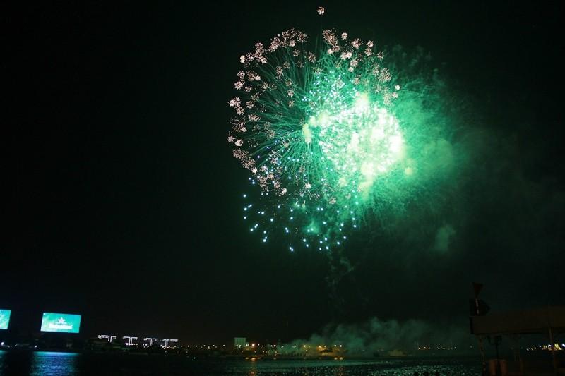 Lung linh pháo hoa chào năm mới Bính Thân - ảnh 3