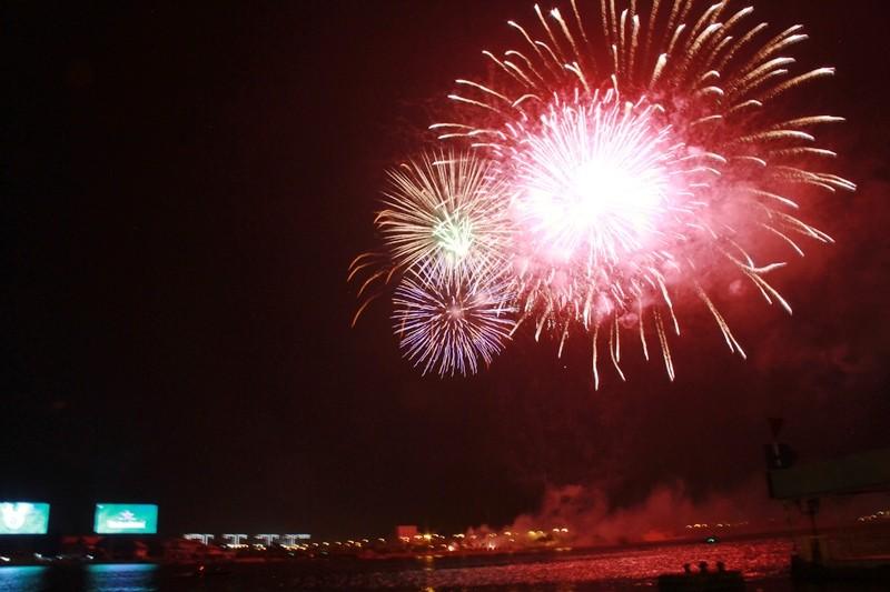 Lung linh pháo hoa chào năm mới Bính Thân - ảnh 5