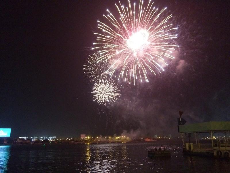 Lung linh pháo hoa chào năm mới Bính Thân - ảnh 6
