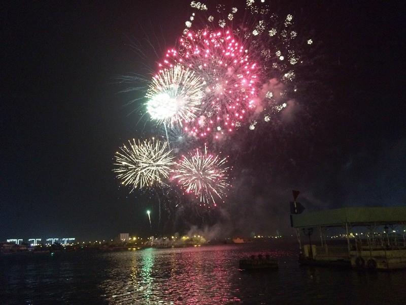 Lung linh pháo hoa chào năm mới Bính Thân - ảnh 7