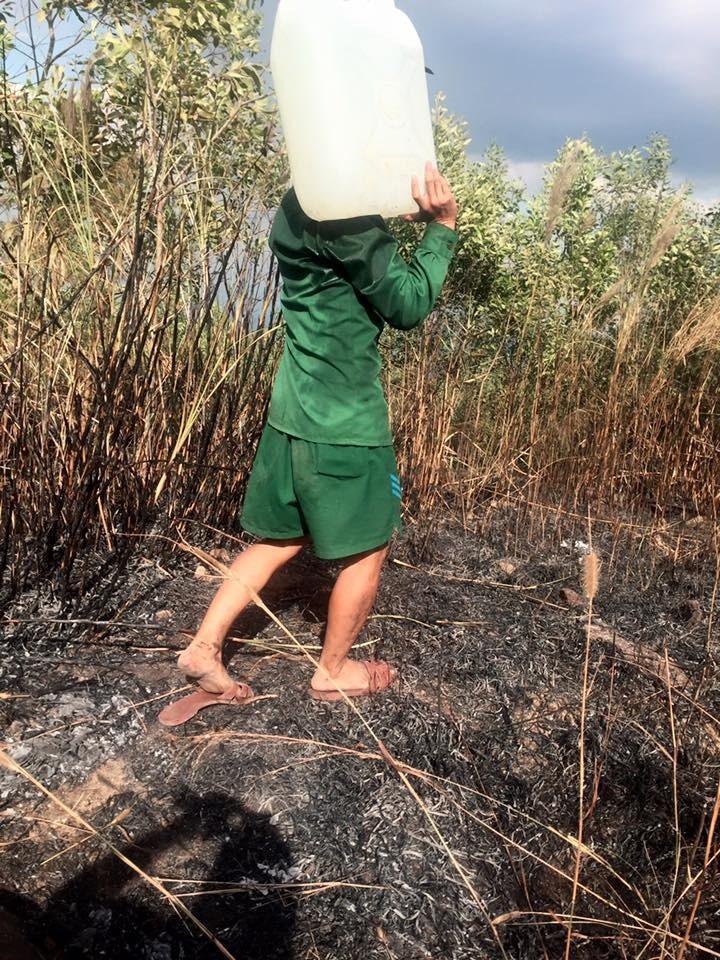 Đã dập tắt vụ cháy rừng trên khu di tích núi Chứa Chan - ảnh 1