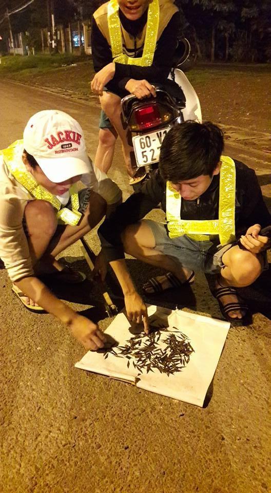 Ủy ban ATGT Quốc gia đề nghị xử lý nạn đinh tặc trên quốc lộ 51 - ảnh 2
