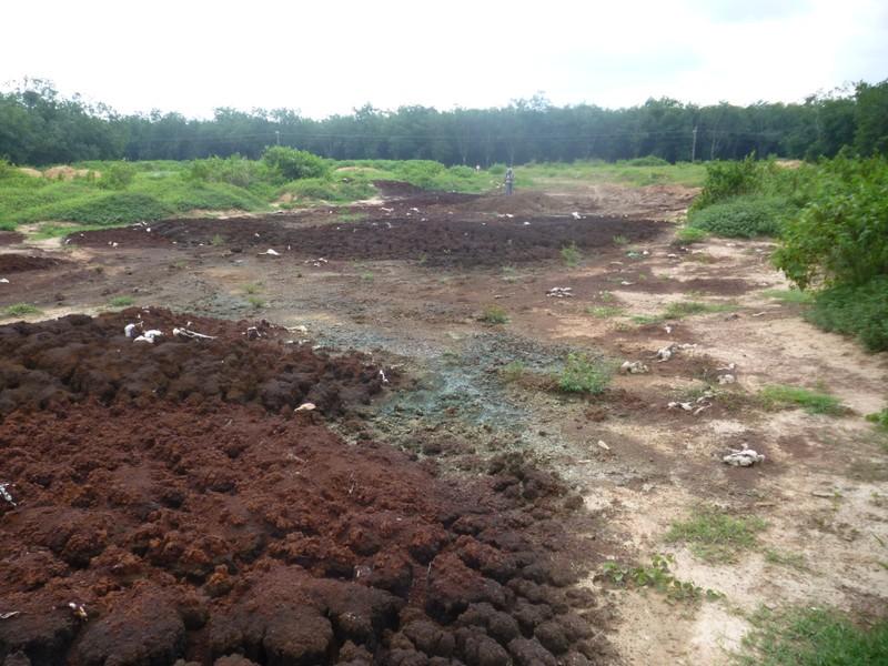 Lại phát hiện đổ trộm hàng trăm tấn bùn thải công nghiệp độc hại  - ảnh 1