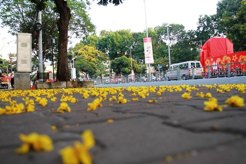 Phố Sài Gòn lãng mạn ngày đầu năm - ảnh 24