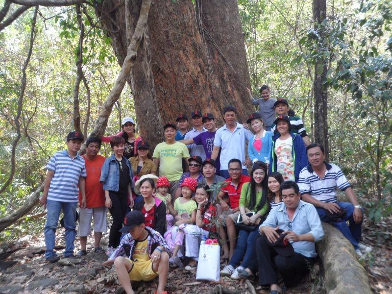 Vào rừng Nam Cát Tiên ngắm cây gõ bác Đồng 700 năm tuổi - ảnh 2