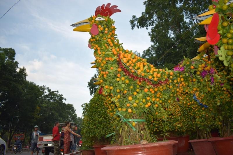 Đàn gà 8 triệu đồng làm từ hàng trăm cây quất - ảnh 6