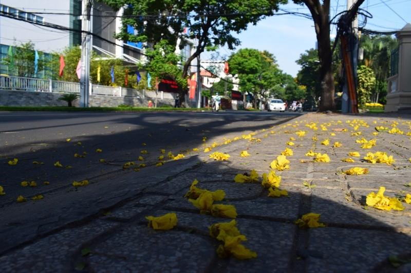 Sài Gòn thênh thanh, bình lặng trong sáng đầu năm - ảnh 14