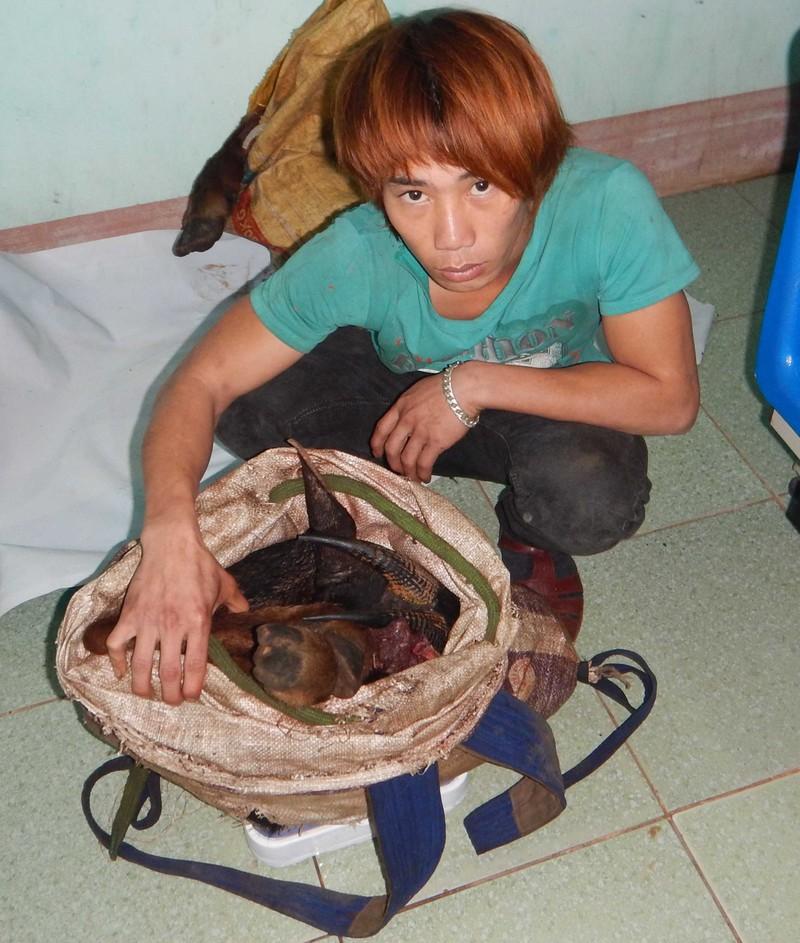 Bắt đối tượng săn Sơn Dương quý hiếm - ảnh 1