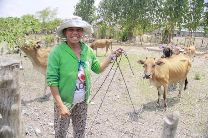 """Đàn bò vừa mới """"phạt"""" được của nhà trai tại nhà H'Duong - Ảnh: Bá Dũng"""