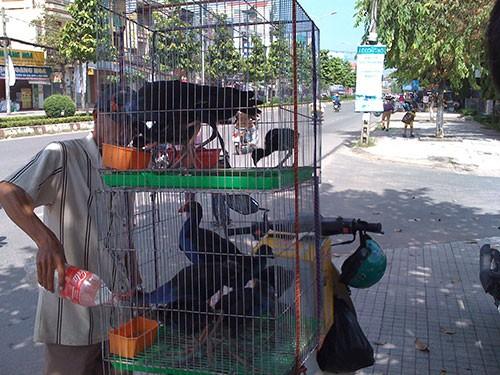 Đi chợ 'lạ' Biên Hòa - ảnh 6