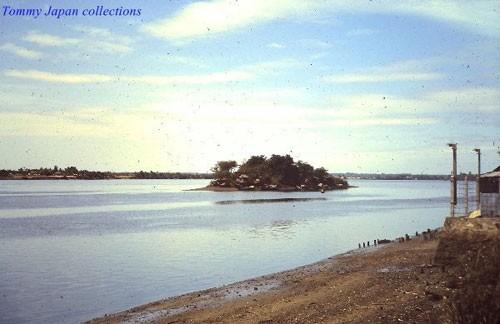 Bí ẩn Cù lao 'biến mất' trên sông Đồng Nai - ảnh 2