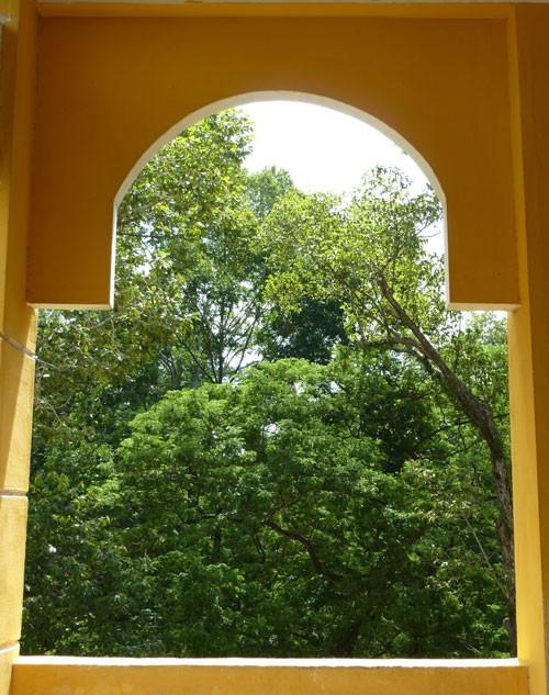 THPT Trưng Vương - ngôi trường cổ kính đầy thơ mộng - ảnh 14