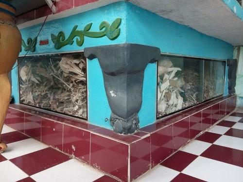 Linh thiêng nghĩa trang cá Ông lớn nhất Việt Nam - ảnh 13