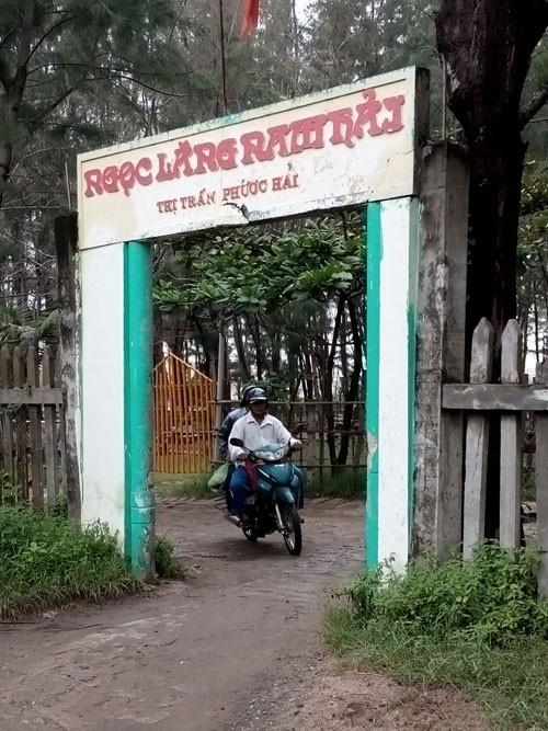 Linh thiêng nghĩa trang cá Ông lớn nhất Việt Nam - ảnh 1