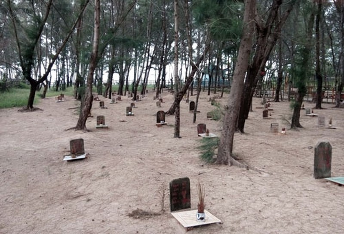 Linh thiêng nghĩa trang cá Ông lớn nhất Việt Nam - ảnh 3
