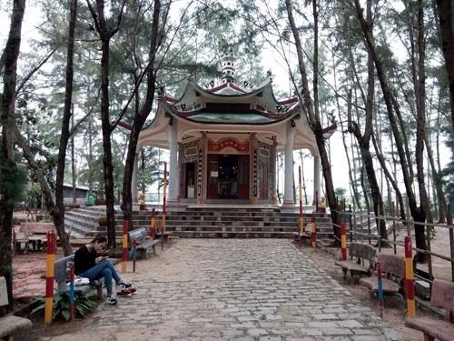 Linh thiêng nghĩa trang cá Ông lớn nhất Việt Nam - ảnh 7
