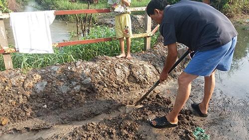 Vườn mai, ao cá ngập nặng sau mưa - ảnh 6