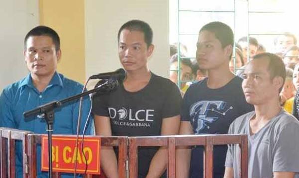 Chặt phá rừng, bốn bị cáo lĩnh 19 năm tù - ảnh 1