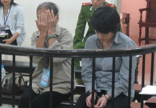 Bà lão lãnh 10 năm tù vì… nghe lời con gái - ảnh 1